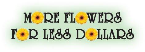 More Flowers Less Dollars!